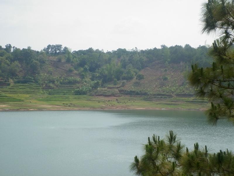 Sea Lake 4