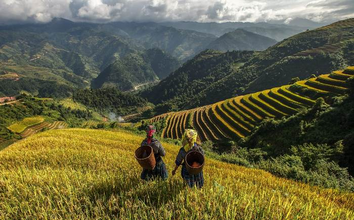 Sapa Vietnam - Top destinations in Vietnam