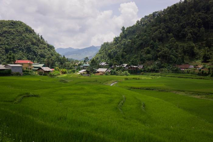 Bac Ha Plateau